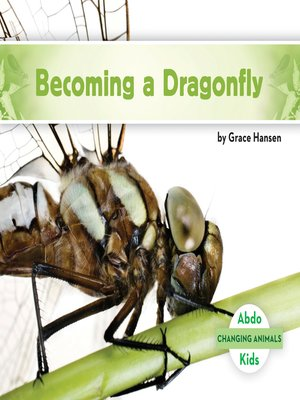 cover image of Becoming a Dragonfly